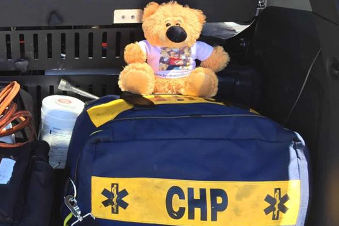 Teddy Bears in CHP 1st responder vehicles